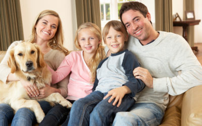 How Pet Dander Impacts Your Indoor Air Quality